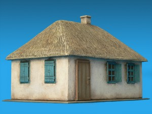 72016 EAST EUROPEAN VILLAGE HOUSE