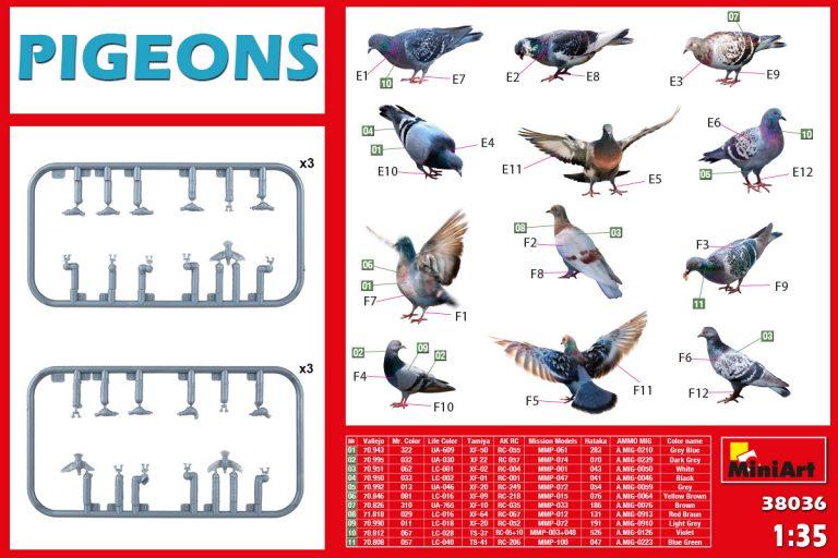 38036 PIGEONS